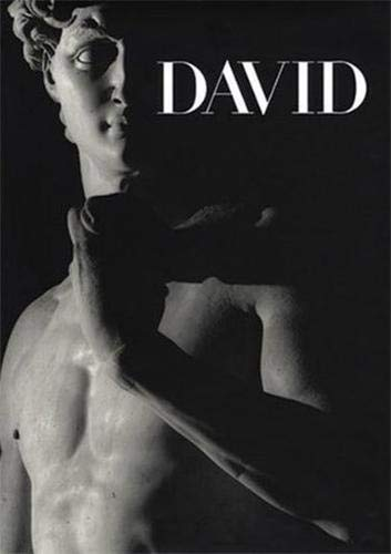 9781903973998: Michelangelo's David: From Symbol to Myth