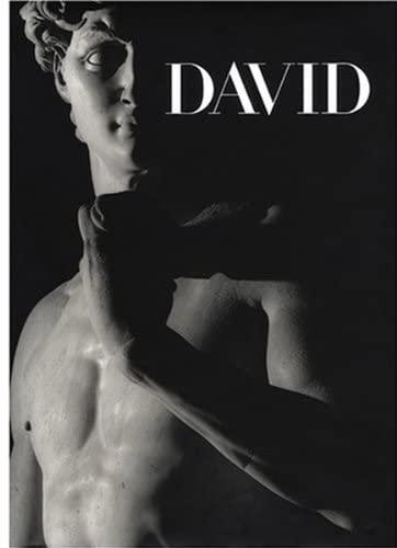 Michelangelo's David: Paolucci, Antonio