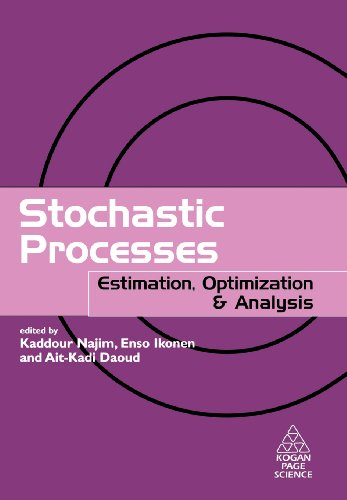 9781903996553: Stochastic Processes: Estimation, Optimisation and Analysis