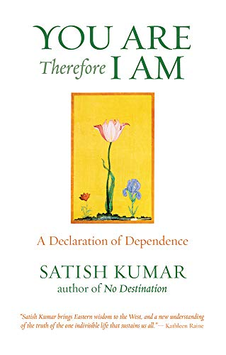 9781903998182: You Are, Therefore I Am: A Declaration of Dependence