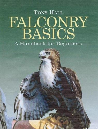 9781904057284: Falconry Basics