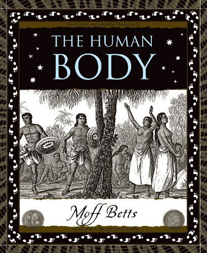 9781904263296: The Human Body