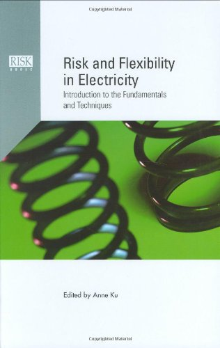 9781904339113: Risk and Flexibility in Electricity: Introduction to the Fundamentals and Techniques