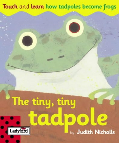 9781904351528: Touch And Learn Tiny Tiny Tadpole (Touch & Learn Board Books)