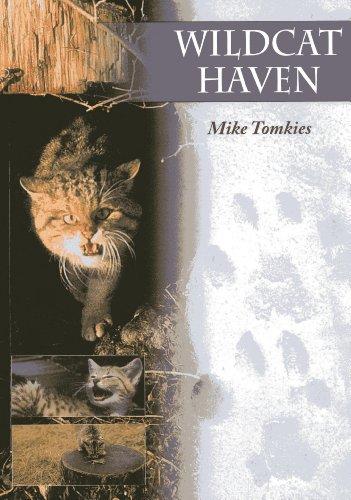 9781904445753: Wildcat Haven