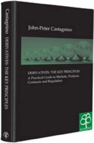 9781904501312: Derivatives: the Key Principles