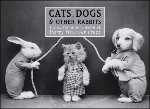 9781904587248: Cats, Dogs & Other Rabbits: The Extraordinary World of Harry Whittier Frees