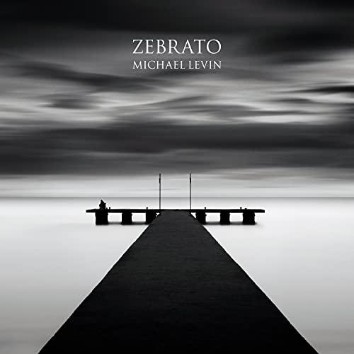 Zebrato: Michael Levin