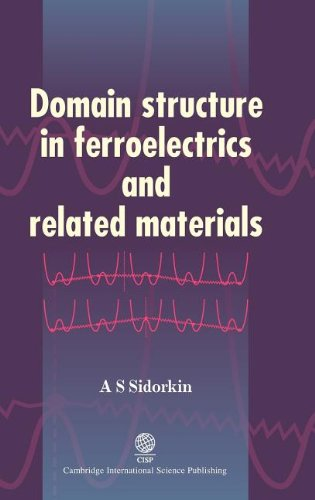 Domain Structure in Ferroelectrics and Related Materials: A. S. Sidorkin