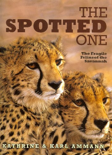 The Spotted One: The Fragile Feline of the Savannah (1904722229) by Ammann, Katherine; Ammann, Karl
