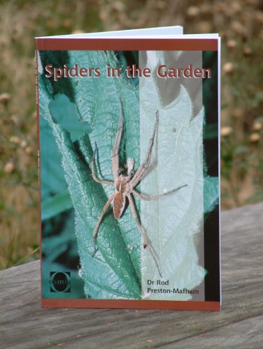 9781904770039: Spiders in the Garden Book