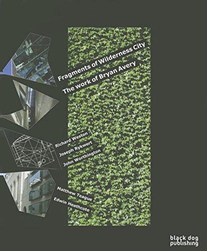 Fragments of Wilderness City (Paperback): John Worthington
