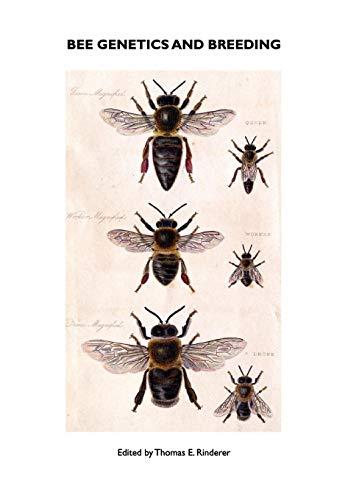 9781904846291: Bee Genetics and Breeding