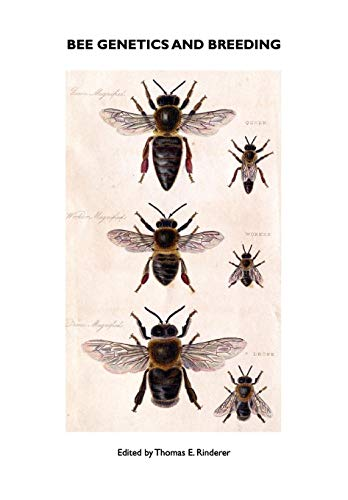 9781904846291: Bee Genetics and Breeding