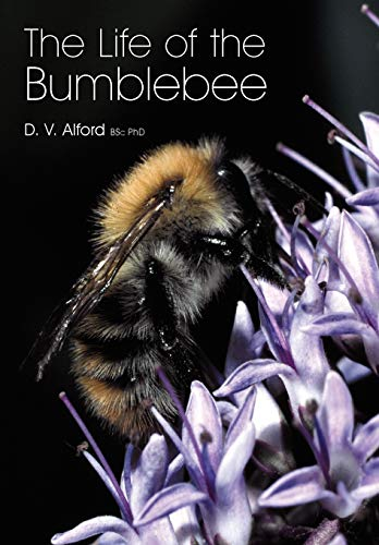 9781904846420: The Life of the bumblebee