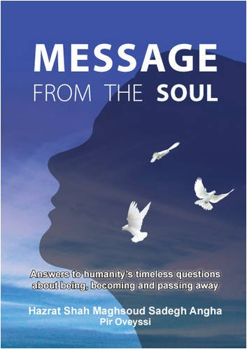 Message from the Soul: Answers to Humanity's Timeless Questions About Being, Becoming and ...