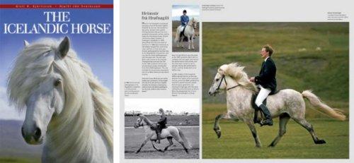 9781904945499: The Icelandic Horse