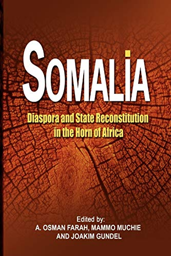 9781905068838: Somalia: Diaspora and State Reconstitution in the Horn of Africa