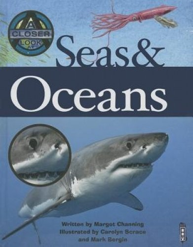9781905087075: Seas and Oceans (Closer Look At...)
