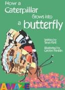 9781905087235: How a Caterpillar Grows into a Butterfly