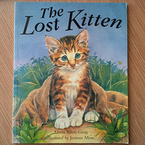 9781905161898: The Lost Kitten