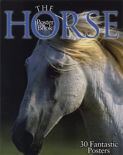 9781905204243: The Horse Poster Book