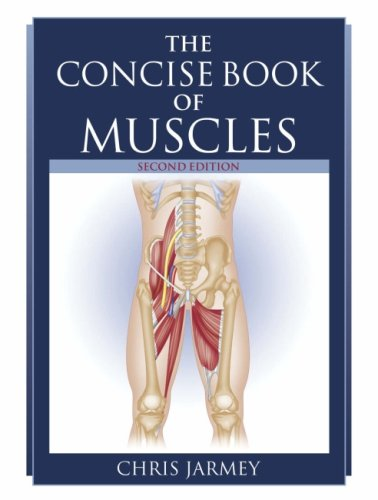 9781905367115: The Concise Book of Muscles