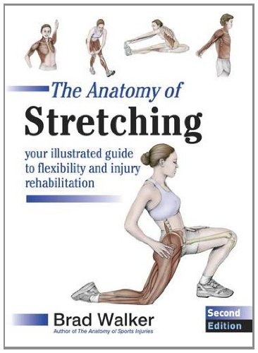 9781905367290: The Anatomy of Stretching: Your Illustrated Guide to Flexibility and Injury Rehabilitation