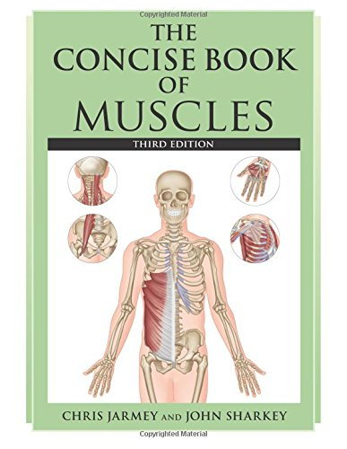 9781905367627: The Concise Book of Muscles