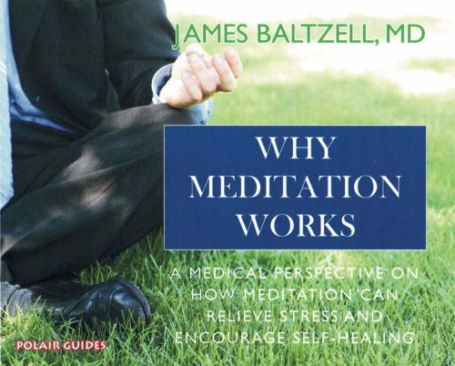 9781905398089: Why Meditation Works: Meditation from a Medical Perspective (Polair Guides)