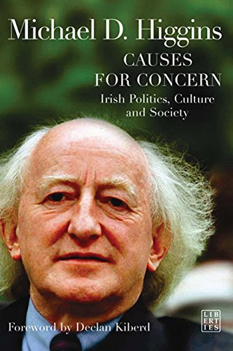 9781905483297: Causes for Concern: Irish Politics, Culture and Society