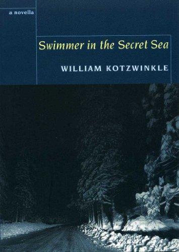 9781905512508: Swimmer in the Secret Sea