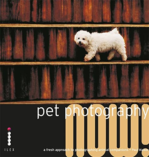 9781905814336: Pet Photography Now!