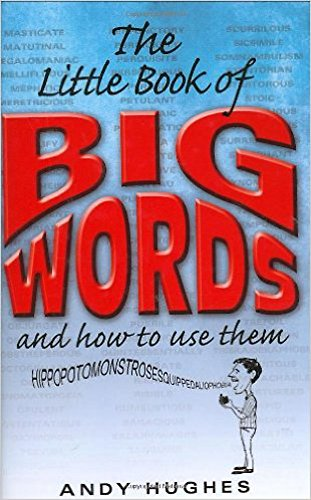 The Little Book of Big Words: Andy Hughes