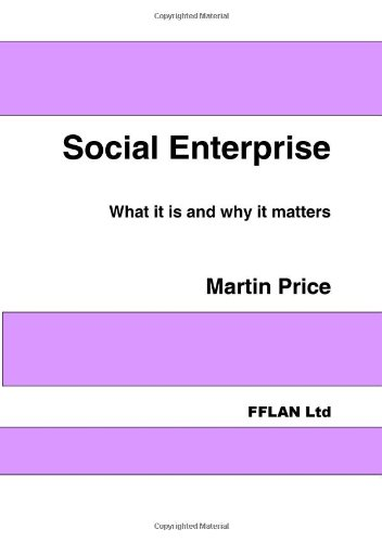 9781905979004: Social Enterprise: What It Is and Why It Matters