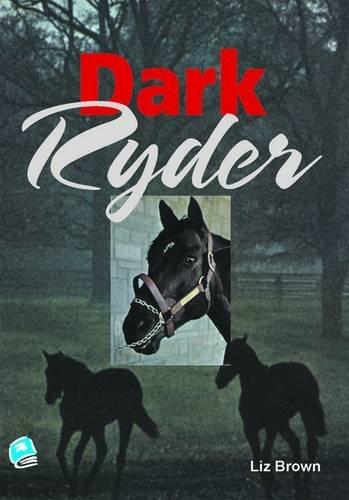 9781906053246: Dark Ryder