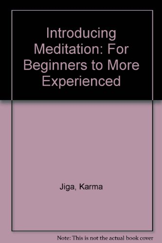9781906119003: Introducing Meditation: For Beginners to More Experienced