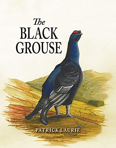 9781906122430: The Black Grouse