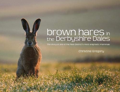 9781906148560: Brown Hares in the Derbyshire Dales: The Story of One of the Peak District's Most Enigmatic Mammals