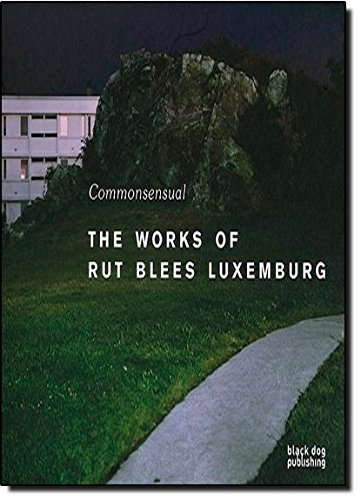 9781906155575: Commonsensual: The Works of Rut Blees Luxemburg (Commonsenual)