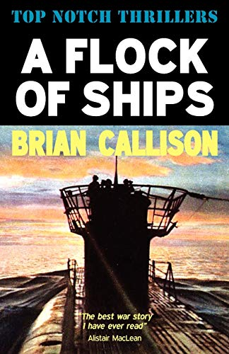 9781906288358: A Flock of Ships