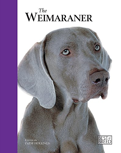 The Weimaraner (Best Of Breed) (1906305161) by Patsy Hollings