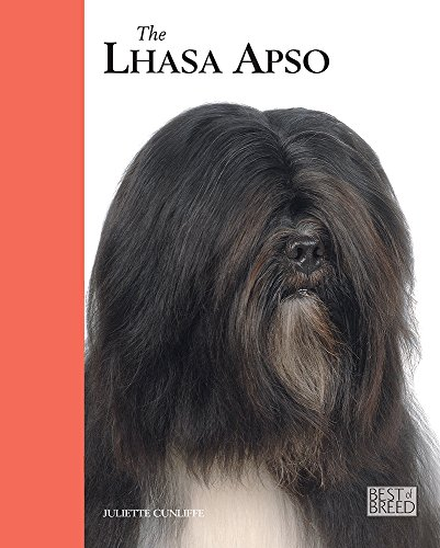 9781906305277: The Lhasa Apso (Best Of Breed)