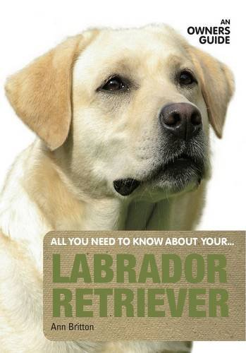 9781906305314: Labrador Retriever: An Owner's Guide (All You Need to Know About Yr)