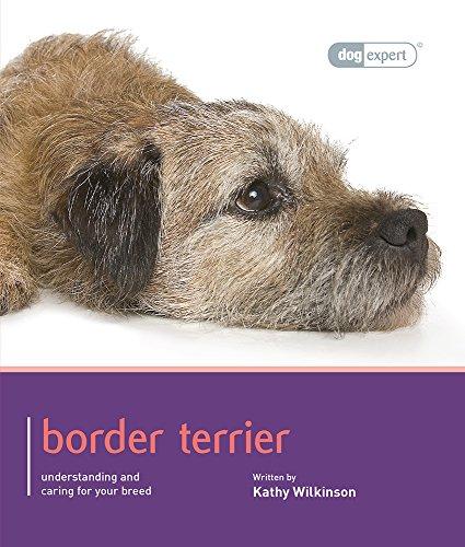 9781906305666: Border Terrier (Dog Expert)