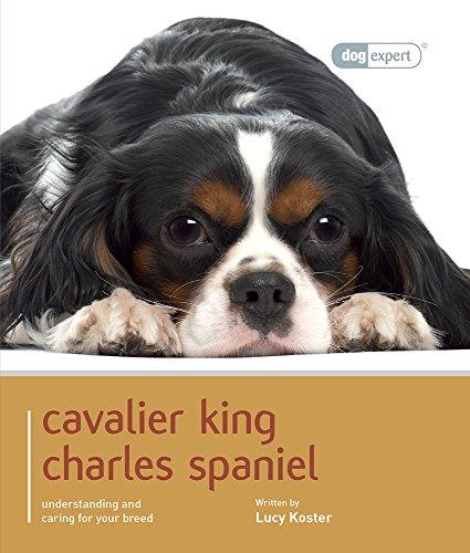 9781906305673: Cavalier King Charles (Dog Expert)