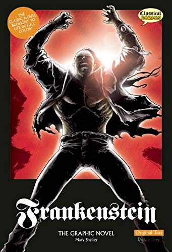 9781906332495: Frankenstein: The Graphic Novel: Original Text