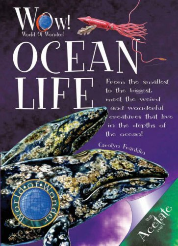 9781906370169: Ocean Life (World of Wonder)