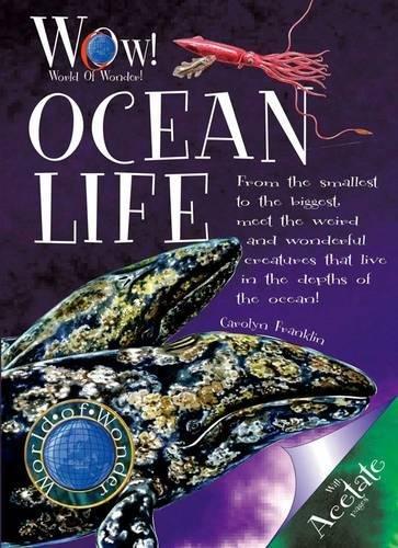 9781906370176: Ocean Life (World of Wonder)