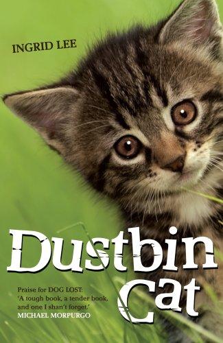 9781906427535: Dustbin Cat